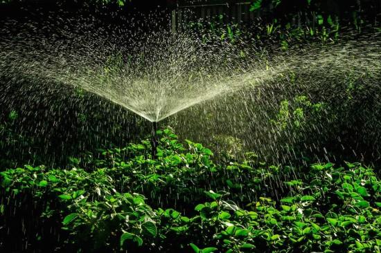 Garden-Sprinkler by Thangaraj Kumaravel (CC BY 2.0)