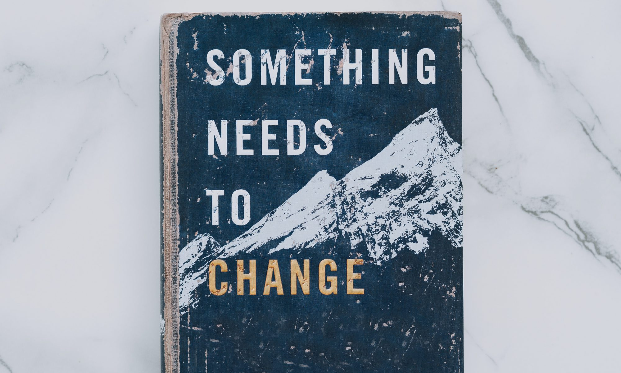 "Buch mit Titel ""Something needs to Change"""